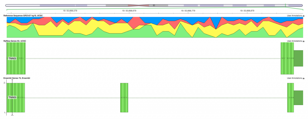 Genomebrowse viewer on TNNI3 transcript mapping